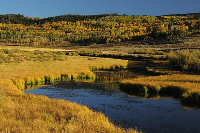 Bear Creek In Autumn