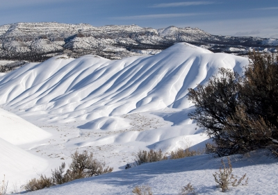 Painted Hills #40