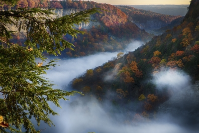 Foggy Morning At Letchworth