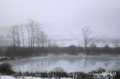 Misty, Murky, Winter Morning