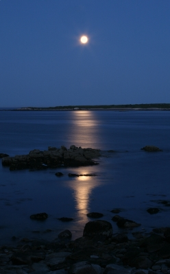 Super Moonrise At Schoodic Peninsula
