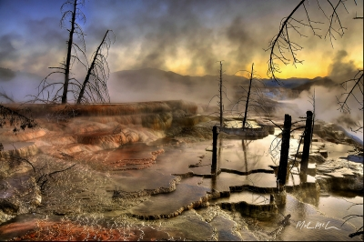 Mammoth Hot Springs Misty Morning