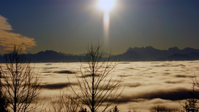 Fog Over The Lac Leman And View Of The Mont Blanc
