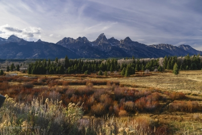 Autumn Scene In The Tetons