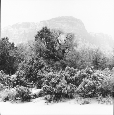 Ghost Ranch Blizzard