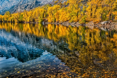 Fall Colors Of The Eastern Sierras