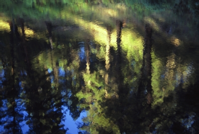 Reflections, Cocolalla Creek