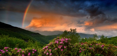 Rainbow And Rhododendrons