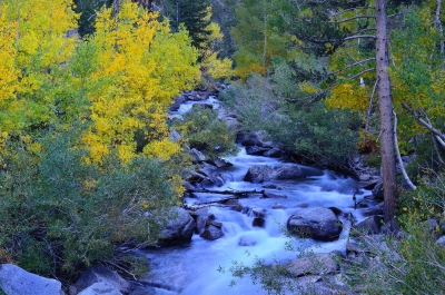 Bishop Creek Fall