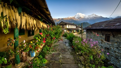 Sunrise At Ghandruk Village (nepal)
