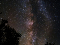 The Great Milky Way