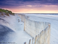 Dunes And Fence At Sunrise