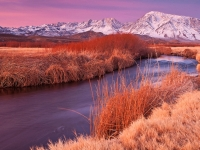 Owens River Dawn