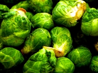 Basket Of Brusselsprouts