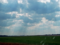 Farmland Under Skies