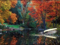 Fall Scene On Brant Lake