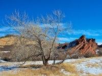 Winter At Roxborough State Park