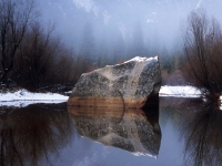 Boulder And Tree Reflections
