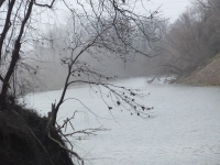 Foggy View Of The Verdigris River
