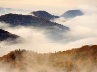 Smokies In Autumn