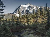 Mt Shuksan Autumn-2