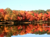 Autumn Reflections On Moon Lake