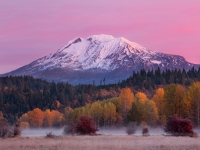 Mount Adams - Autumn