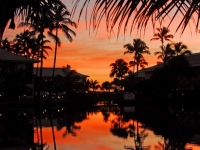 Magic At The Crack Of Dawn