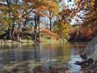 Autumn On The Guadalupe River