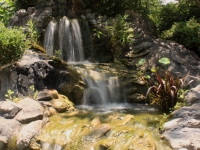 Water Fall At Houmas House Garden