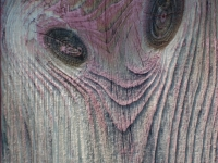 Goblin Face In Wood
