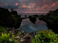The Pool Where Gods Swim