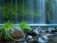 Mossbrae Falls, The Low Down