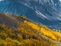 Sneffels Mountain Range And Fall Foilage