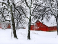 Perfect Red Barn