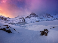 Icefields Morning