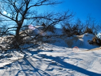 Winter At Indiana Dunes State Park
