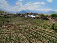 Farming Patterns, Nako Village