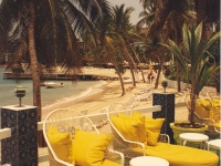Yellow Lounge Chairs