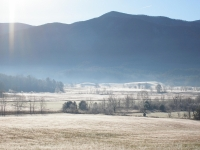 Frosty Morn At Cade's Cove