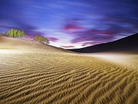 Twilight In Desert