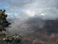 Grand Canyon Pastel (after The Storm)