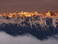 Hurricane Ridge Dawn