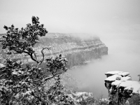 Emergence #5 - Icy Fog In The Grand Canyon