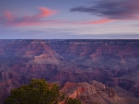 Mornging Light In The Grand Canyon