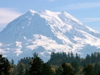 Majestic Mount Rainier