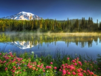 Mt. Rainier Reflection In The Morning