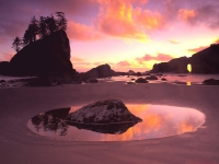 Sunset At Olympic National Park