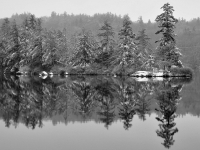 Burr Pond Reflections