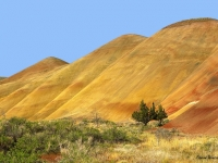 Painted Hills In Reverse